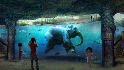 Zadbajcie o mieszkania dla łodzian, a nie dla słoni!